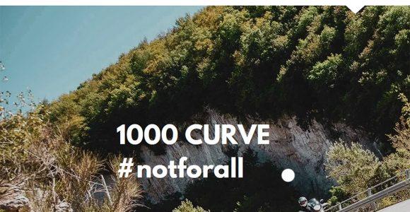 banner 1000 curve