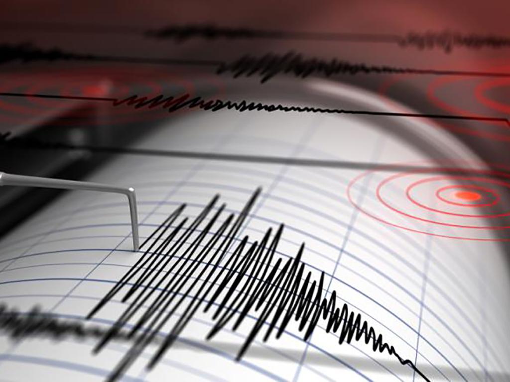 sismagrafico